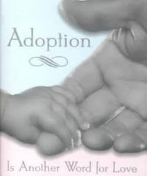 New Beginnings Adoption and Family Services